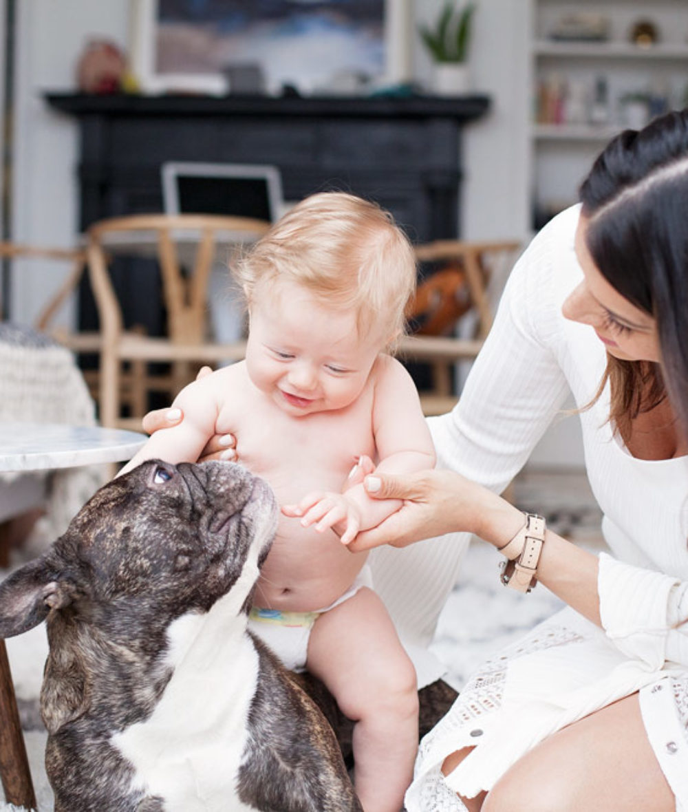 My experience of having a baby and pet NYC mom dog