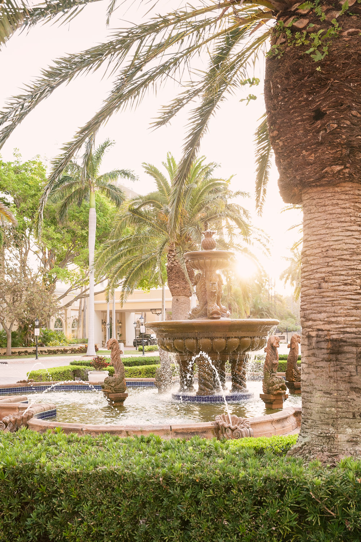 Sarasota Ritz Carlton Summer Family Getaway