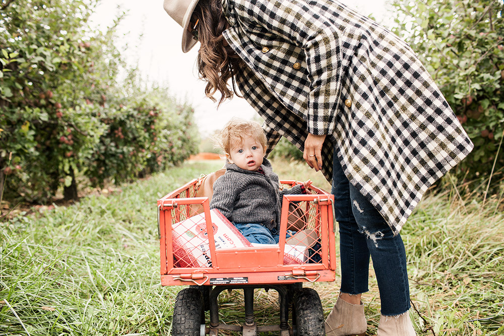 Family Trip Apple Orchard New York Fall Fashion Blogger What to Wear in Fall Sweater Denim Club Monaco