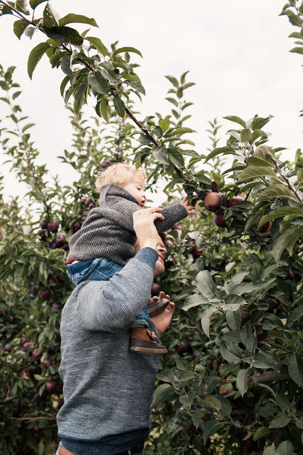 Family Trip Apple Orchard New York Fall Fashion Blogger What to Wear in Fall Father Son Inspiration Matching