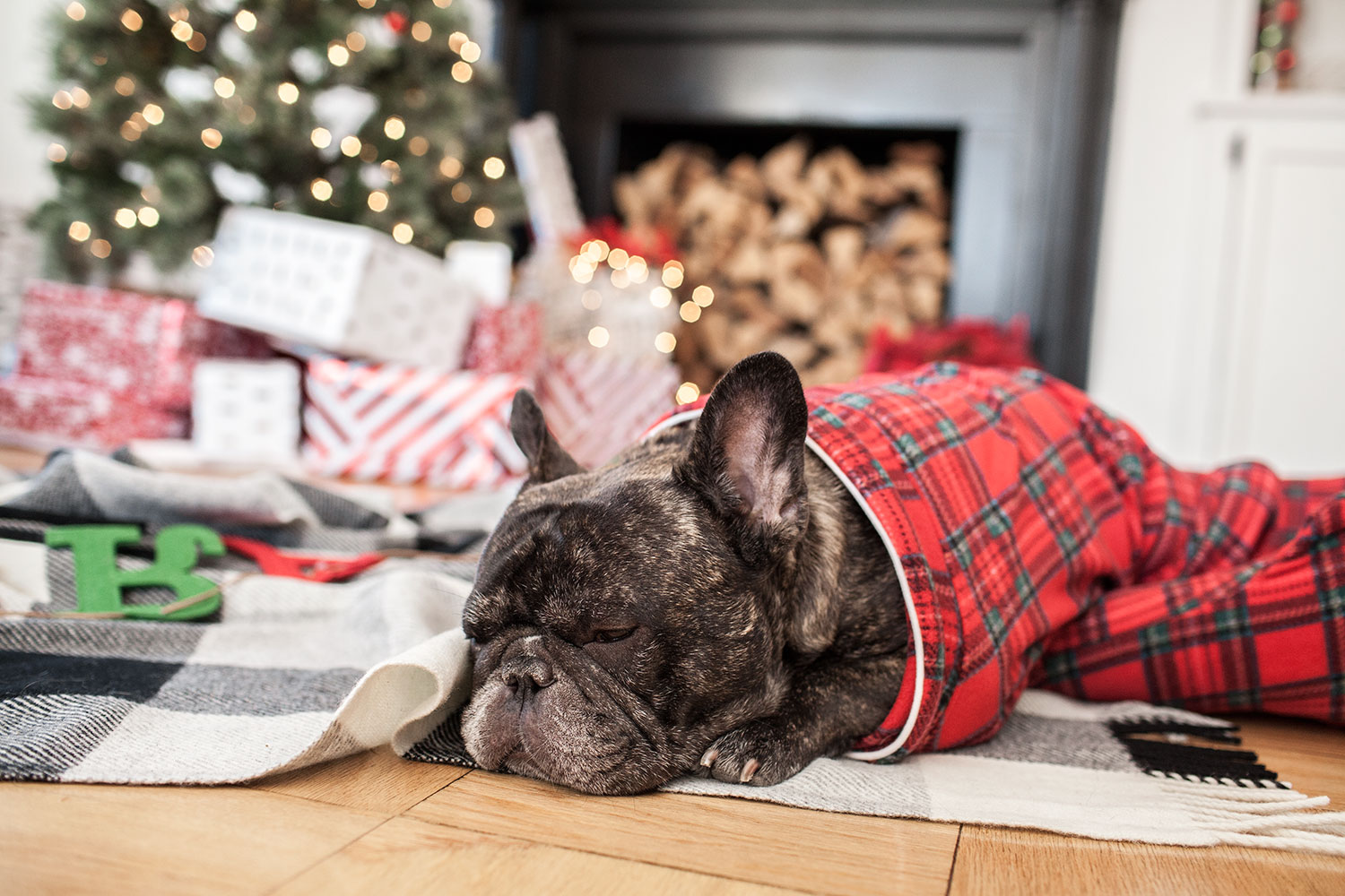 Target plaid holiday dog pajamas, holidays