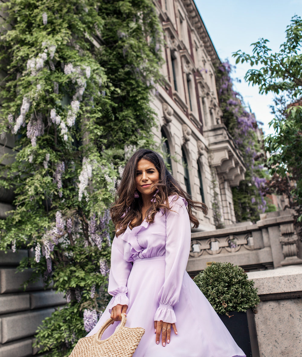 lilac for spring
